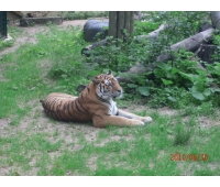 Kaunas Zoo Park