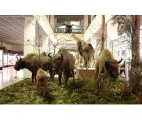 Tadas Ivanauskas Zoo Museum